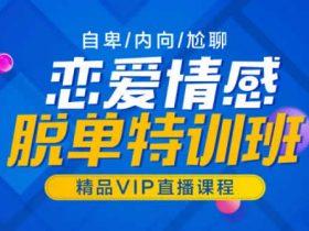 山本教育《素云12期VIP恋爱课程》视频教学